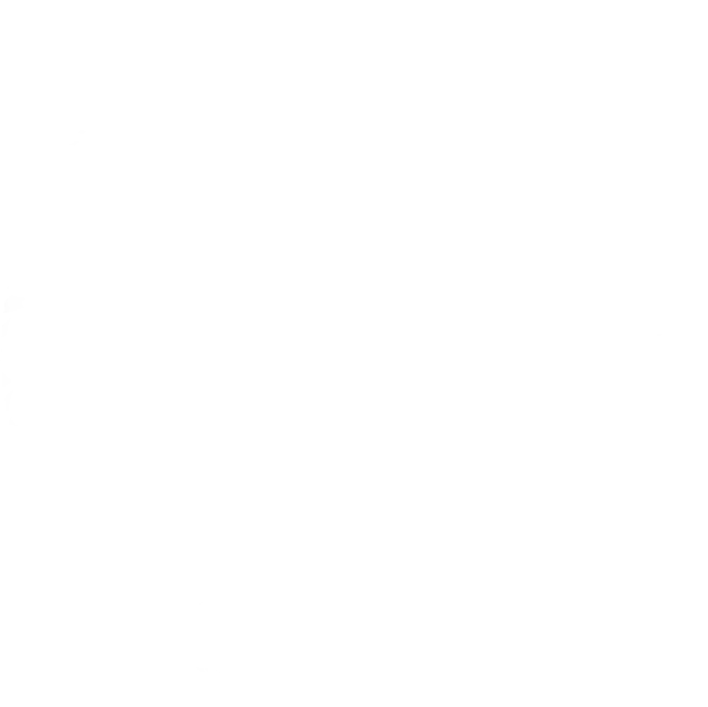 Texas Registered Engineer